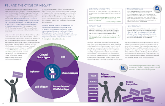 Sample page from Ensuring Equity in Problem-Based Learning Toolkit