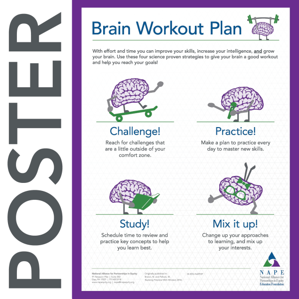 NAPE's Brain Workout Plan Infographic Poster