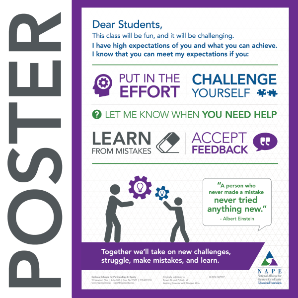 NAPE's Dear Student... High Expectations Poster