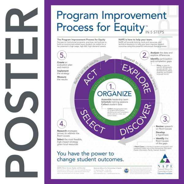 NAPE's Program Improvement Process for Equity Poster