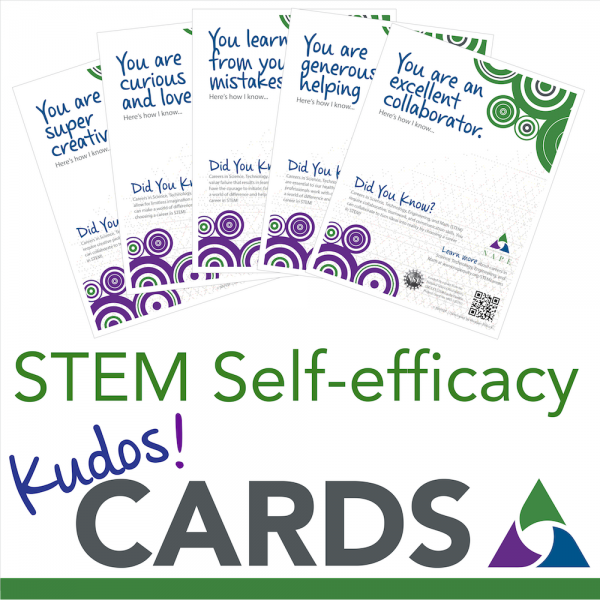 NAPE STEM Self-efficacy Kudos Cards